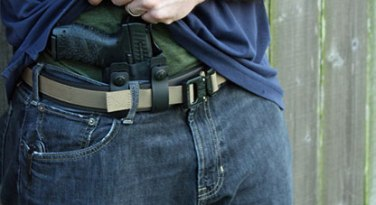 appendix-carry-cover