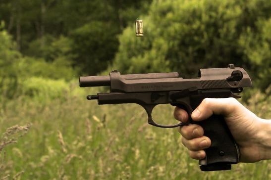 firearms-1